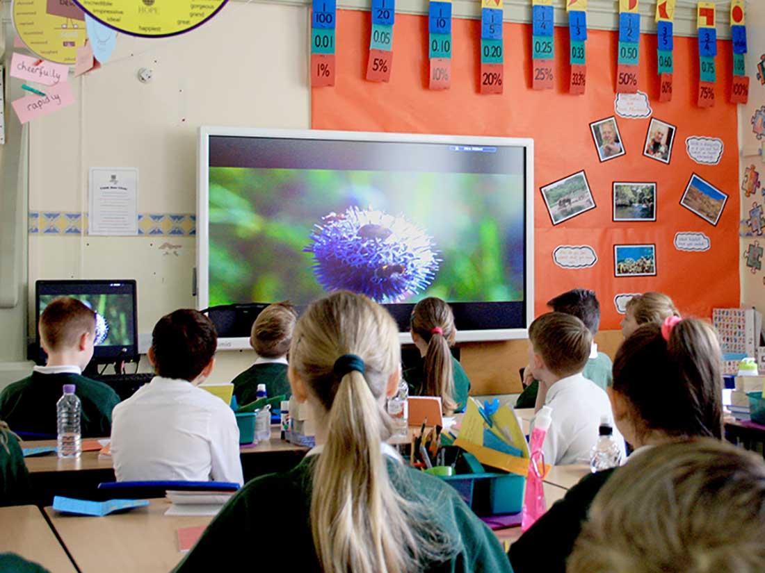 نمایشگر اسمارت لمسی در مدارس